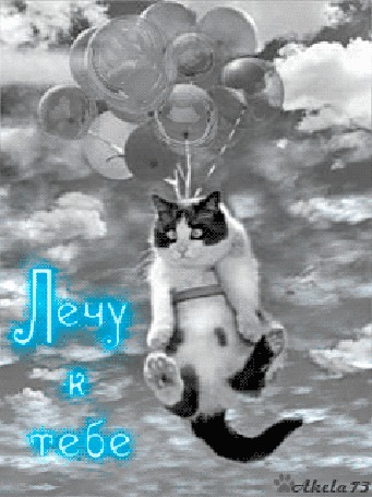 Анимация Кот с привязанными воздушными шариками летит среди облаков, (Лечу к тебе), Akela 73