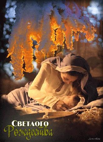Анимация Девушка склонилась над новорожденным, над ней ветка в снегу, (Светлого Рождества), автор Лепесток