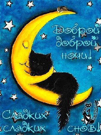 Анимация Мышка сверху наблюдает, как полумесяц раскачиваясь в звездном небе, уснул в обнимку с черным котиком (Доброй ночи! Сладких снов!)