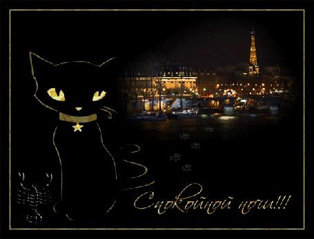 Анимация Черный кот в блестящем ошейнике со звездочкой на фоне ночного города (Спокойной Ночи!)
