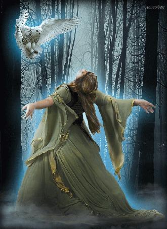 Анимация Девушка с распростертыми руками перед совой на фоне зимнего леса в тумане, автор Лепесток