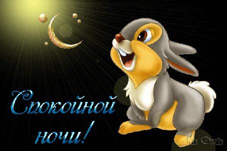 Анимация Диснеевский зайчонок Топотун / Thumper на фоне блестящего полумесяца, (Спокойной ночи!)