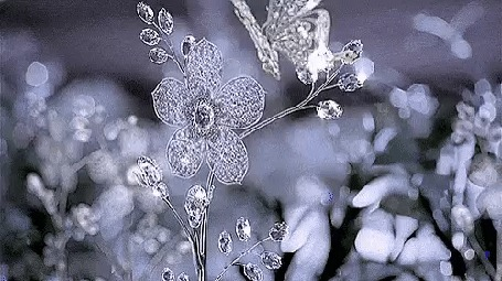 Анимация Хрустальный цветок, над которым летает хрустальная бабочка, на фоне бликов хрустального поля цветов (c)