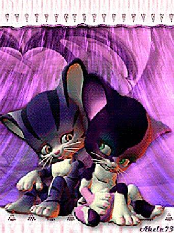 Анимация Влюбленные кот и кошка сидят на фоне розового полупрозрачного занавеса, by Akela 73