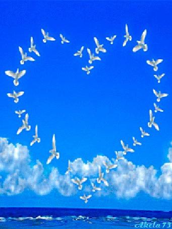 Анимация Стая белых голубей парит над синим морем в виде сердца, by Akela 73