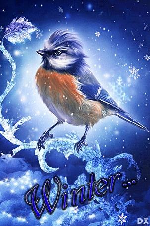 Анимация Снежинки кружась падают над птичкой, сидящей на обледенелой ветке (Winter / Зима), by dixinox