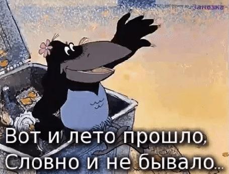 Анимация Ворона в мусорном баке, мультфильм Возвращение блудного попугая, (Вот и лето прошло, Словно и не бывало.)