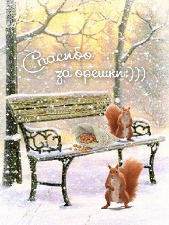 Анимация Белки на лавочке в парке с кульком орехов (Спасибо за орешки:)))