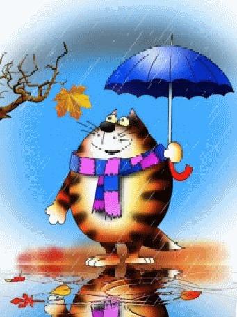Анимация Кот в полосатом шарфе стоит в дождь под синим зонтом перебирает задними лапами и смотрит, как трепыхается последний желтый лист на дереве, в луже его отражение