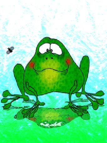 Анимация Лягушка поймала языком мошку и съела