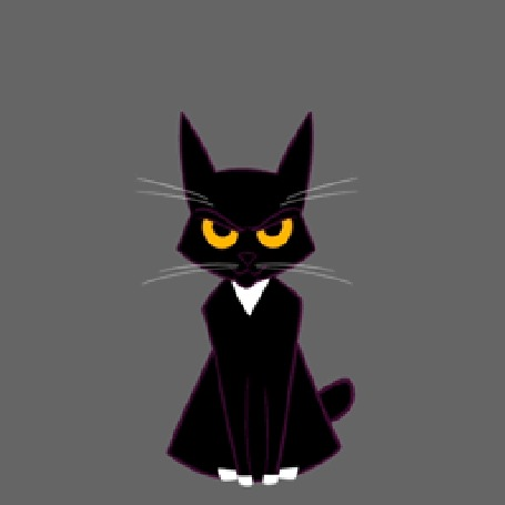 Анимация Прикольный черный котенок