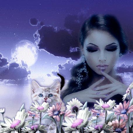 Анимация Девушка и котенок на фоне облачного неба с луной перед цветами