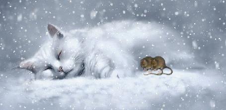 Анимация Спящий кот и рядом мышки под падающим снегом