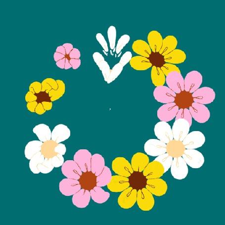 Анимация Цветы на бирюзовом фоне