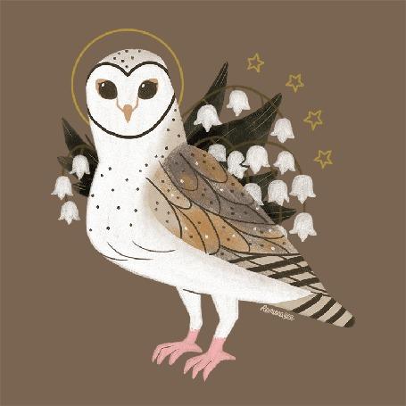 Анимация Рисованная сова с цветами