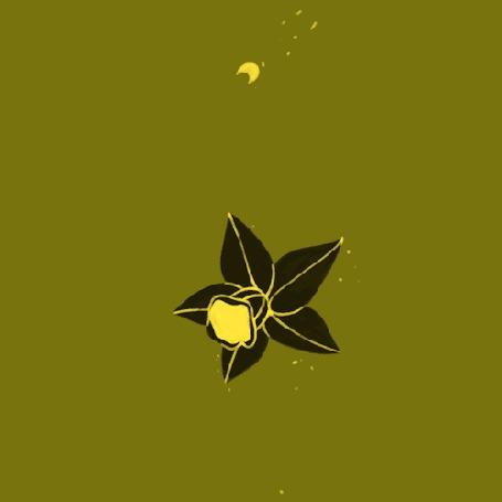 Анимация Распускается цветок и появляется сердечко