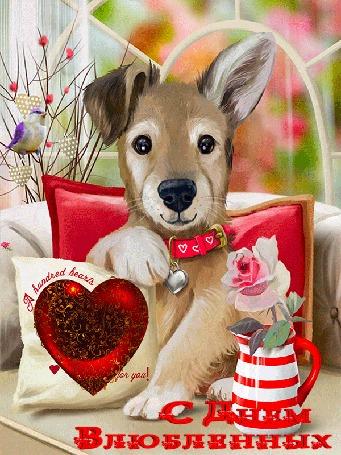 Анимация Щенок сидит на диване в окружении подушек и поздравляет с Днем Влюбленных, by tarka