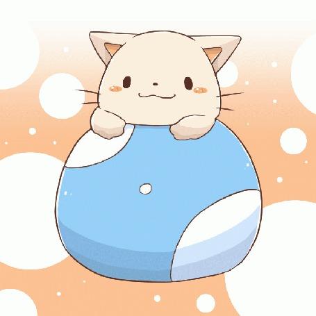 Анимация Милый котик на мячике, by 八葉しおん