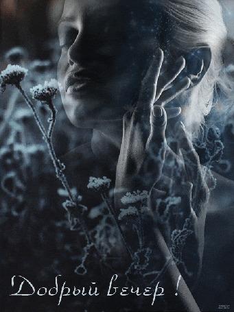 Анимация Девушка мечтательно сложила руки около лица на фоне замерзших цветов в снегу, (Добрый вечер! )