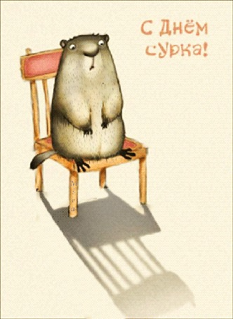 Анимация Удивленный сурок сидит на деревянном стуле, на белом фоне (С днем сурка! ), by Mira