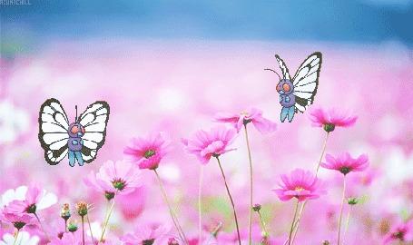 Анимация Бабочки порхают над цветами