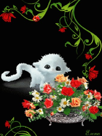 Анимация Милый белый котенок у вазона с цветами, автор Елена