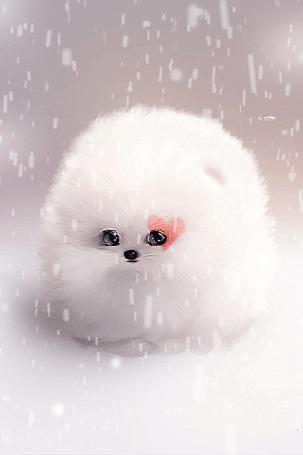 Анимация Белый шпиц под падающим снегом, by Sandramalie