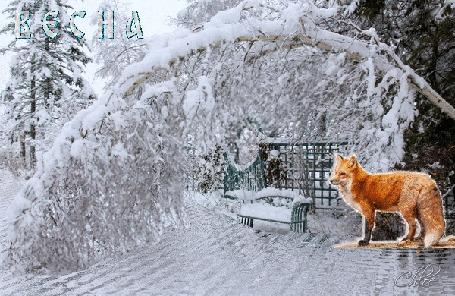Анимация Ранний весенний пейзаж, течет ручей мимо лавочки, над ним покачивается снежная ветка, лисичка чувствует весну (Весна)