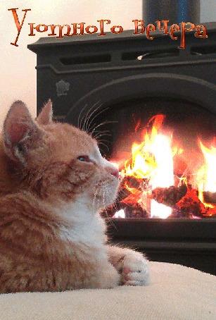 Анимация Рыжий кот лежит у камина, щурясь от удовольствия, (Уютного вечера)