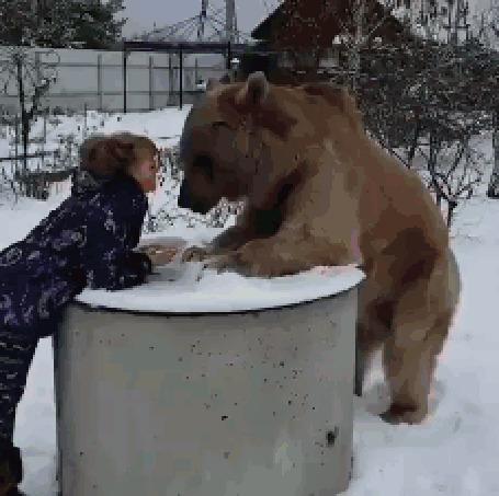 Анимация Девушка кормит медвежонка, он благодарит, облизывая ей лицо