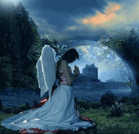 Анимация Девушка - ангел белокрылый молится, сложив руки перед собой, наклонив голову вниз