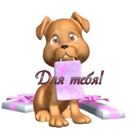 Анимация Маленький песик держит в зубах пакет с подарком, около него лежат голубые коробочки, перевязанные розовым бантиком (Для тебя!)