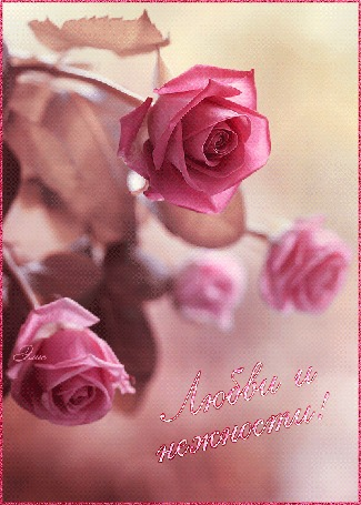 Анимация Букет розовых роз (Любви и нежности!), автор Элис