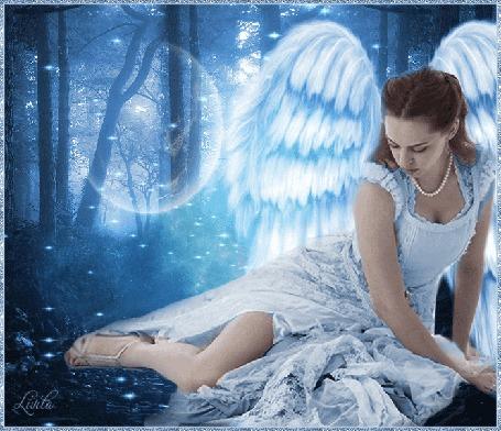 Анимация Девушка - ангел сидит в ночном лесу