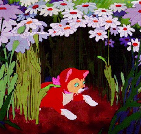 Анимация Рука Алисы кладет ромашку на котенка и он падает, кадры из мультфильма Алиса в Стране чудес / Alice in Wonderland