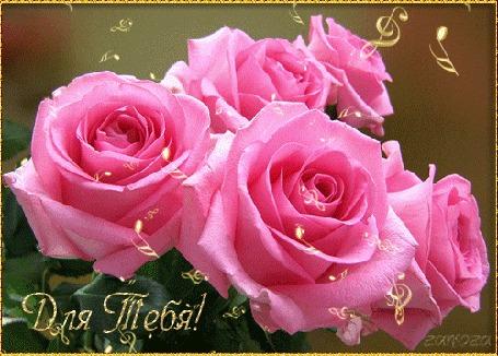 Анимация Ноты и скрипичные ключи вылетают из розовых роз (Для тебя!), автор анимации Zanoza