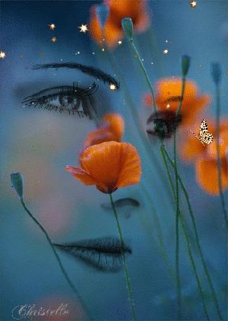 Анимация Маки на фоне портрета девушки с порхающей бабочкой