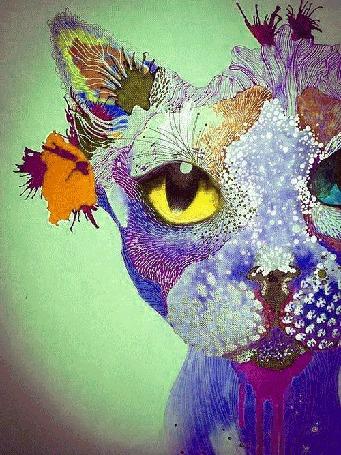 Анимация Психоделически мигающий абстрактный разноцветный кот