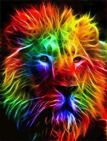 Анимация Разноцветный мерцающий лев на черном фоне