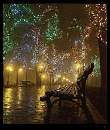 Анимация Красивый вечерний пейзаж: скамейки, стоящие вдоль дорожки в туманом парке, освяшенном украшенными светящимися гирляндами деревьями и горящими фонарями
