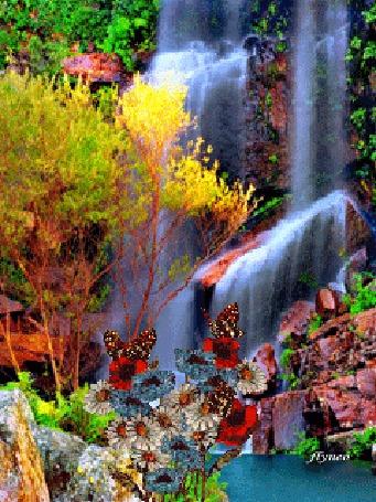 Анимация Бабочки порхают над цветами у водопада