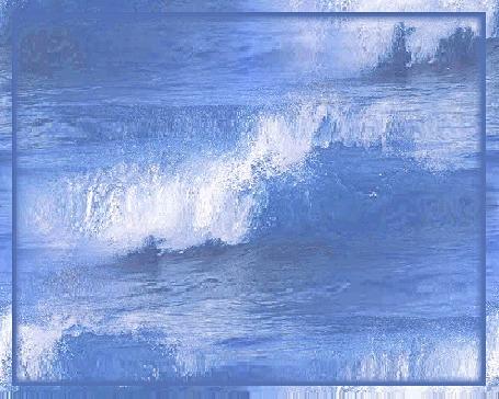 Анимация Чайка летает над волнами