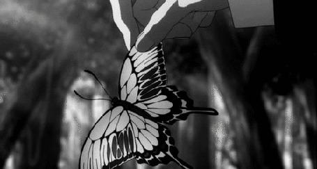 Анимация В руке человека бабочка