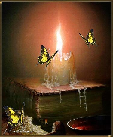 Анимация Бабочки порхают около горящей свечи, стоящей на старинном фолианте (fa adelina)