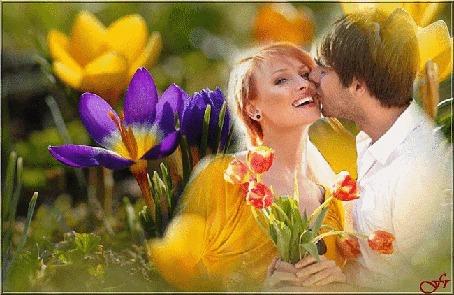 Анимация Парень целует девушку с букетом тюльпанов в руках на фоне весенних крокусов