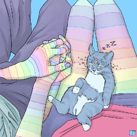 Анимация Котенок спит на ножках девушки, сидящей рядом с парнем, держащим ее руку, by Phazed