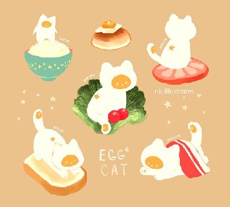 Анимация Яичный кот / EGG CAT, by nadia kim / nk-illustrates