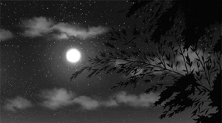 Анимация Ветка колышется от ветра на фоне ночного неба с луной
