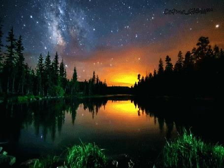 Анимация Звездное небо над озером в окружении леса