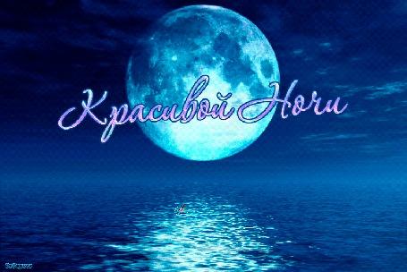 Анимация Дельфин прыгает в ночном океане на фоне луны (Красивой Ночи)